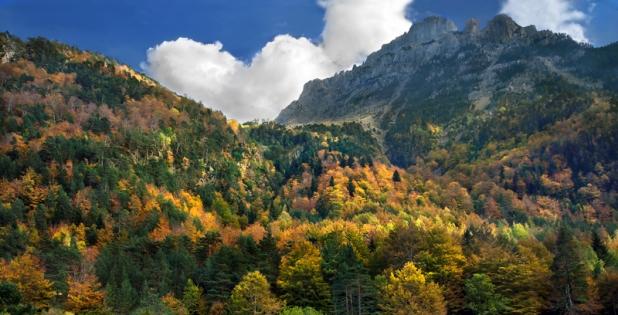 oza en el norte de Huesca